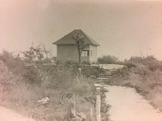 My house at the beach in the 1960s