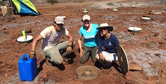 Project team and collaborators planting with Cocoon technology. Johanes Ramírez (GNP), Willemijn Stoffels (Land Life Company) and Patricia Jaramillo (Galapagos Verde 2050 project leader).