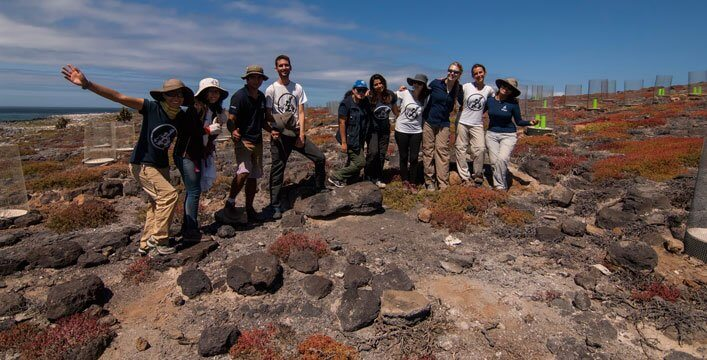 Galapagos Verde 2050 Continues Contributing to Ecological Restoration of South Plaza