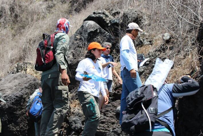 CDF, GNPD and British Broadcasting Corporation (BBC) team looking for penguin nests in Caleta Iguana.