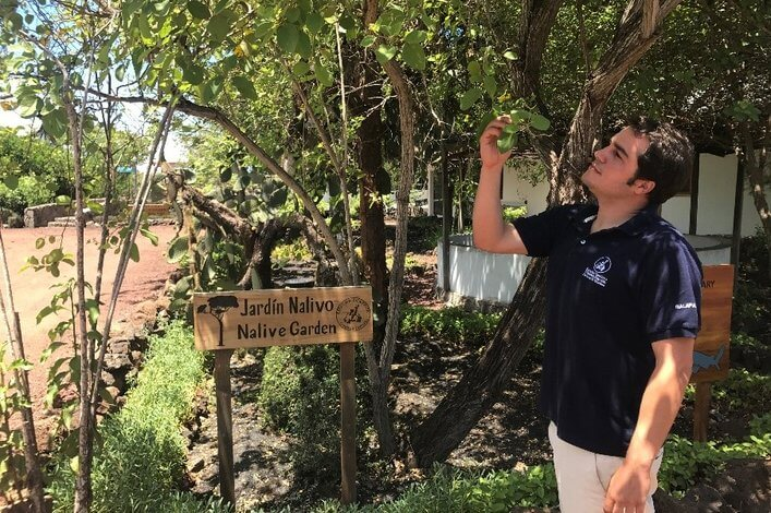Gardens are an important part at the Charles Darwin Research Station, which is working on a program to restore plants in parts of the Galapagos archipelago.