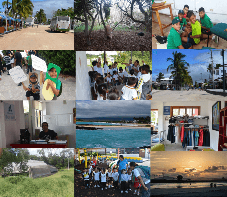 The Charles Darwin Foundation's activities on Isabela.