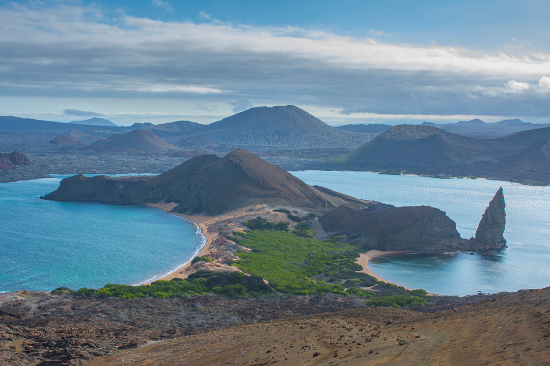 Support science for conservation by visiting Galapagos with Ecoventura.