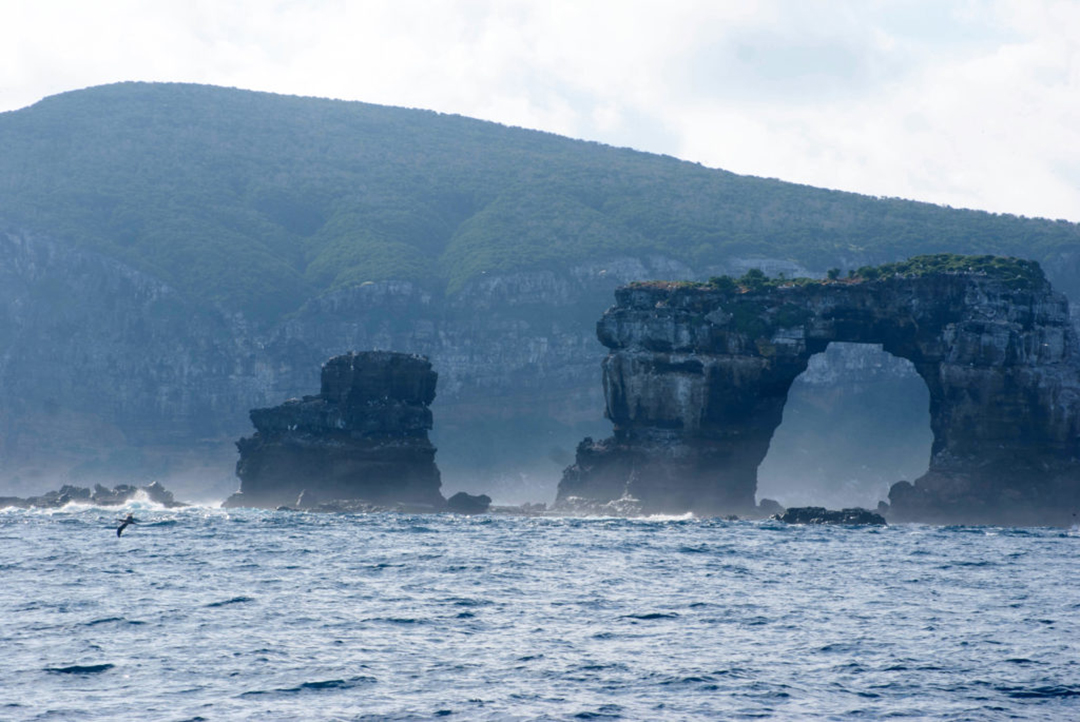 Darwin Arch, in the north of Galapagos. Photo by: Patricia Martí Puig.