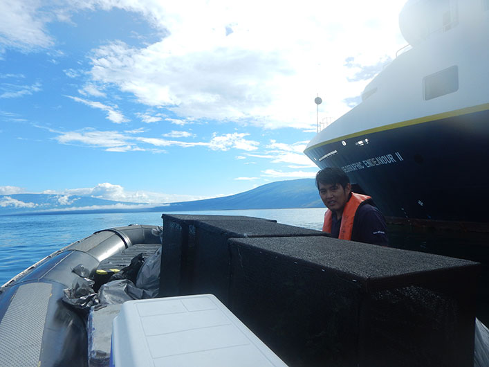 Transporting the seedlings to Playa Tortuga Negra, thanks to the support of Lindblad Expedition's Endeavour II ship.