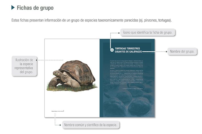 Description sheets of groups, from the Galapagos Atlas