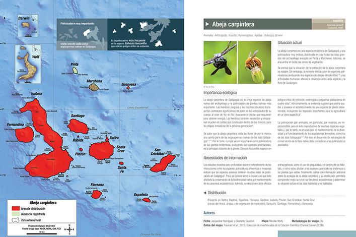 Descripción de fichas de especies nativas del Atlas Galápagos