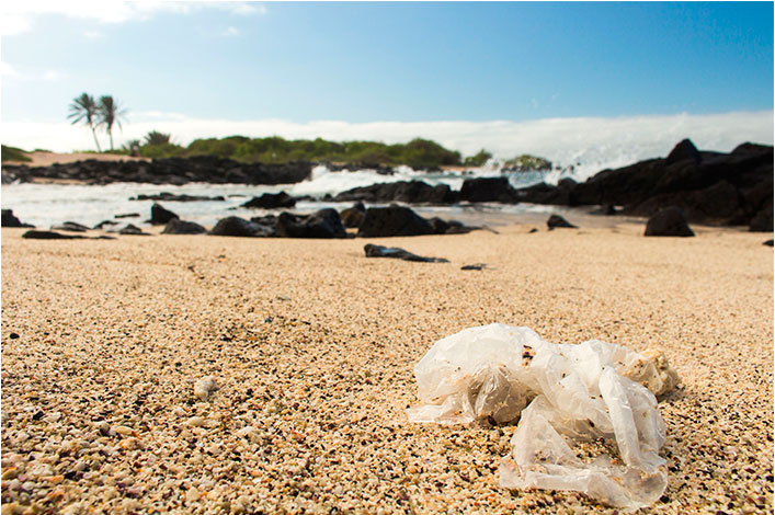 Changing Attitudes towards Plastic Pollution through art projects in Galapagos