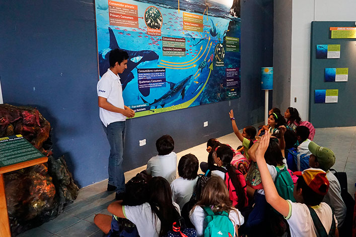 The 5th grade students of Tomás de Berlanga learn about marine ecology at the Marine World exhibition at the