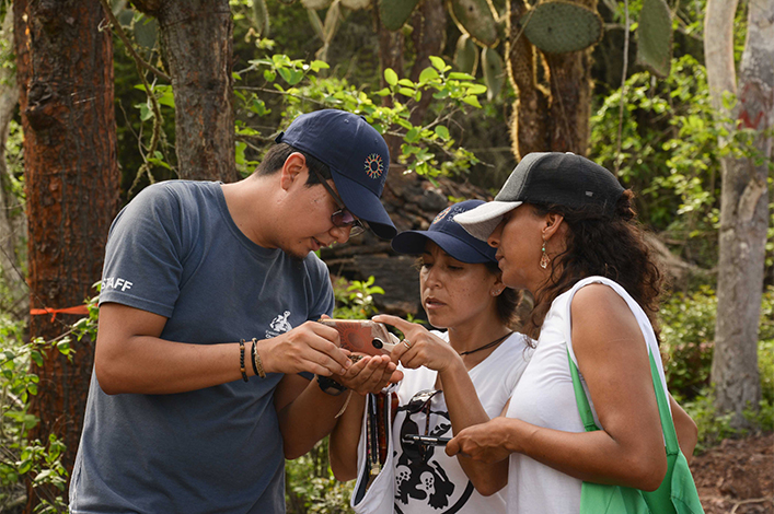 During the BioBlitz with the participation of the Galápagos community