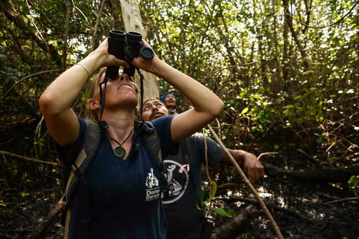 Francesca Cunninghame,Jorge Jimenez and GNPD ranger Roberto Ballesteros looking for a mangrove finch nest