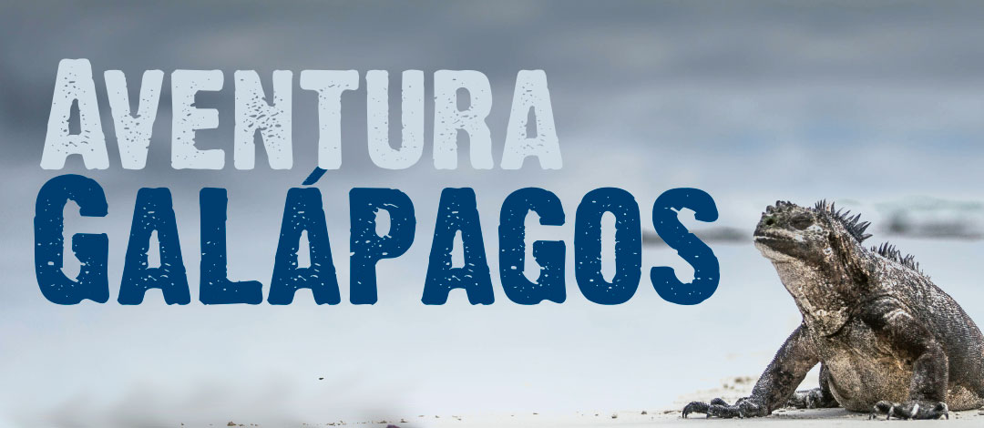 "New virtual reality experience ""Galapagos Adventure"""