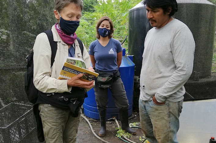 Getting to know the plants and insects on farms on Santa Cruz, Galapagos