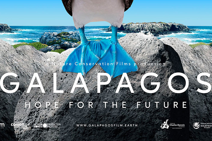 Galapagos, Hope for the Future:  A Documentary that Highlights the Hard Work for the Conservation of the Archipelago