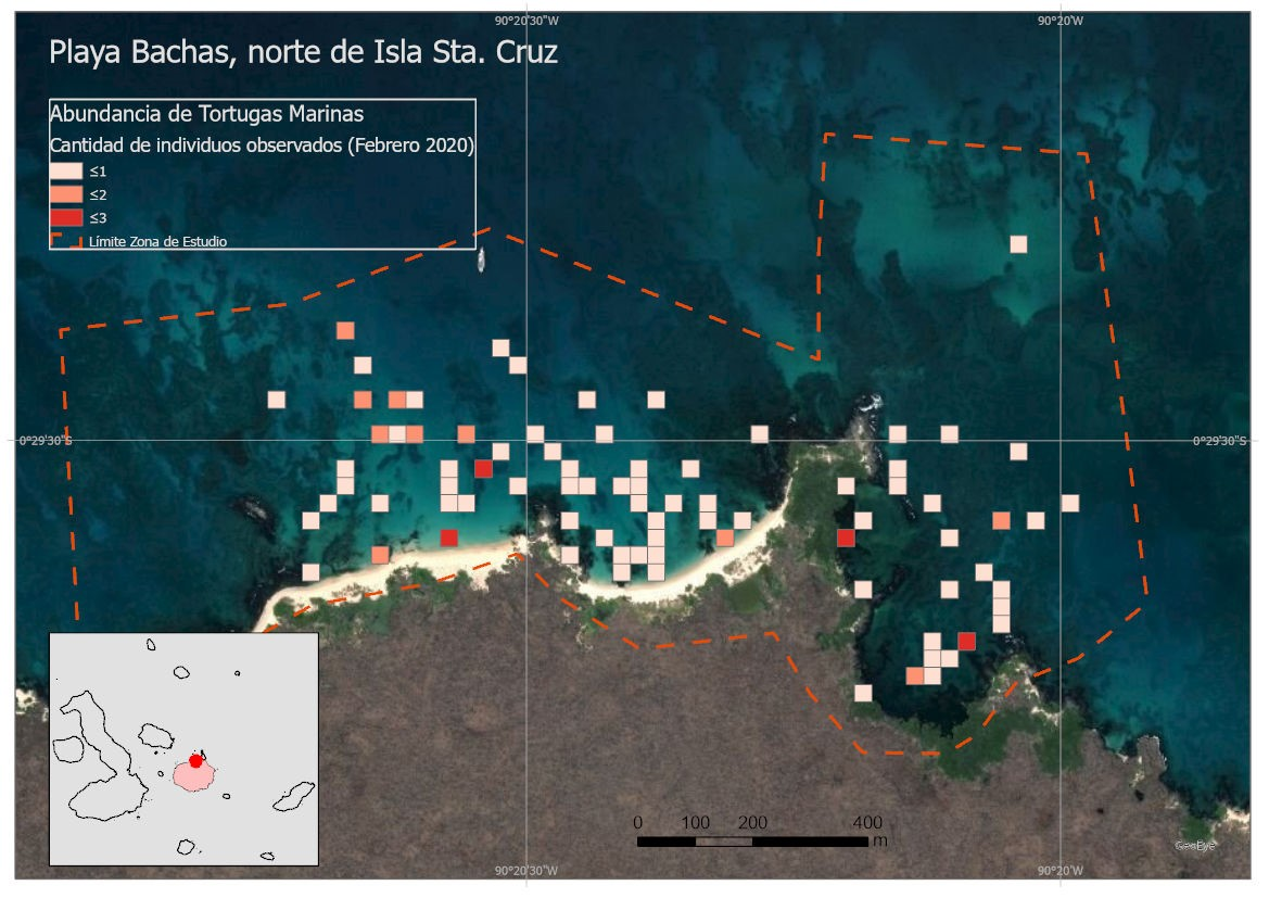 Figure 3. Map of the abundance of sea turtles at Las Bachas.