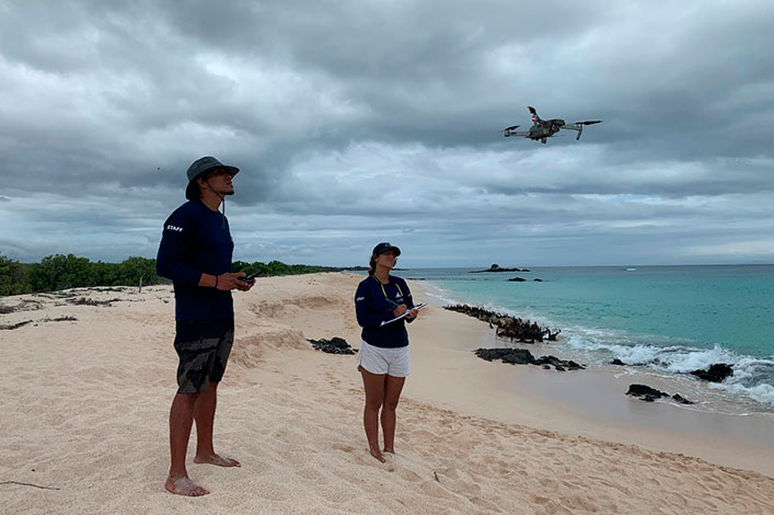 Sea Turtles from above: Drones used for research & conservation