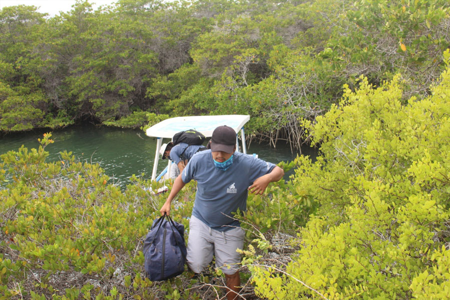 Wilson disembarking the equipment to walk to the mangrove plot, defined as our study site.