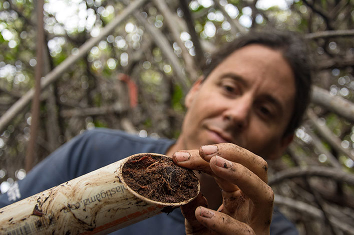 Creativity in Science: Studying Mangroves in Galapagos.