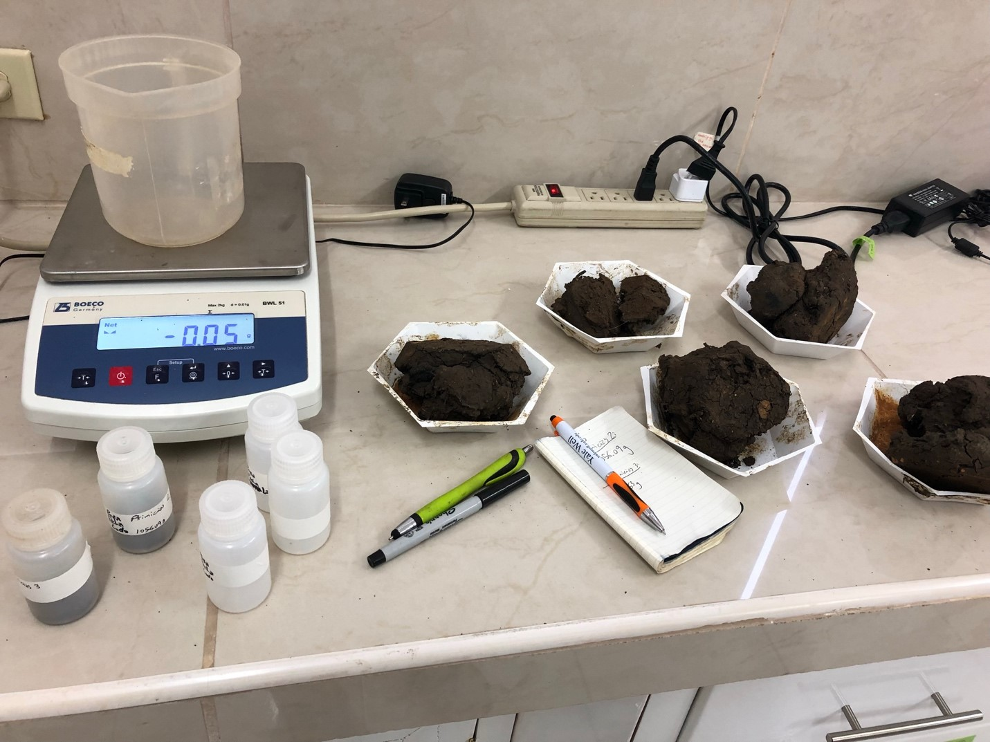 Dry mud of ponds used by tortoises awaiting to be weighted at the Charles Darwin Research Station laboratory.