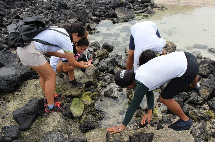 Students looking for stories to tell through photographs on rocky shores.