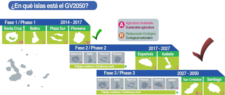Fases del proyecto GV2050.
