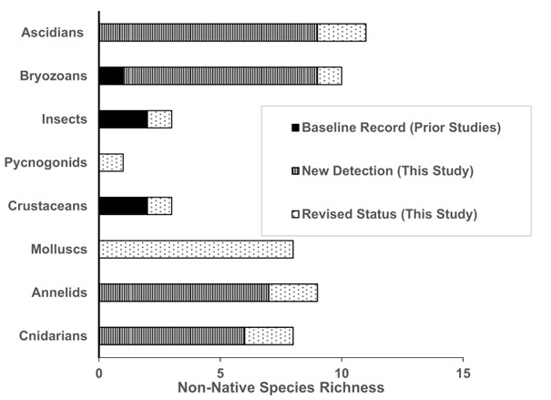 Documented number of non-native marine invertebrate species in the GMR per taxonomic group. Shown are the previous baseline of five species recognized as introduced (black), new detections from 2015-2016 field surveys (vertical lines), and species previously recognized as native or endemic but now recognized as introduced due to our studies (dots). Taken from Carlton, Keith & Ruiz, 2019.