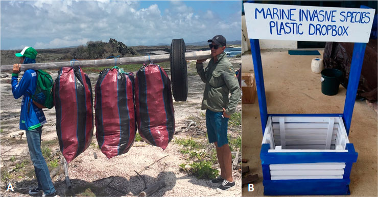 GNPD rangers carrying out a coastal clean-up at a non-visitor site. We participate on these clean ups organized by the GNPD. B: Our marine debris drop-off point at the Charles Darwin Research Station on Santa Cruz Island. Photos by Sofía Green.