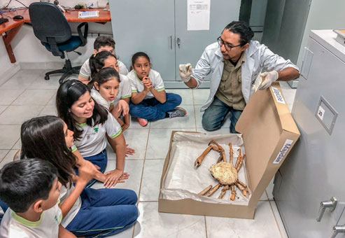 Lenyn Betancourt from the MCCDRS demonstrating a preserved crab to a group of students from a local school. CDF Photo Archive.