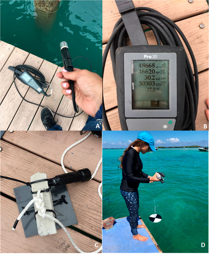 A-B: Portable multimeter for water salinity, temperature and dissolved oxygen. C: Temperature data logger attached to an assembled settlement plate. D: Sofía Green using a Secchi Disk to measure water transparency or turbidity at one of our study sites. Photos by Rosita Calderón.