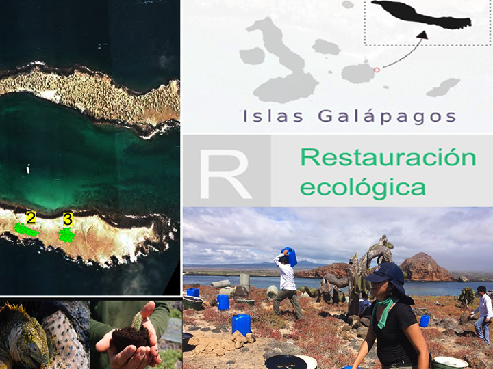 Research Assistant for the Galápagos Verde 2050 Project
