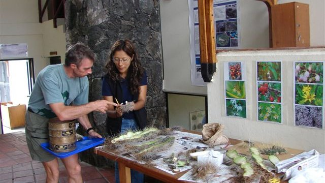 Adjunct scientist, Dr. Steven Blake, working with local CDF scientist Patricia Jaramillo.